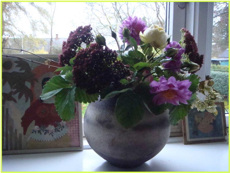 Novemberhave blomster