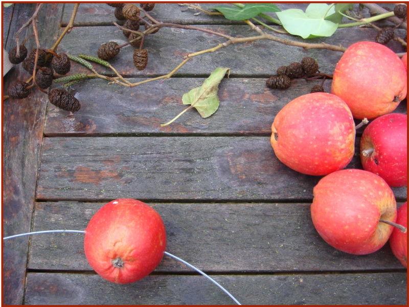 Æblekrans hul lige igennem