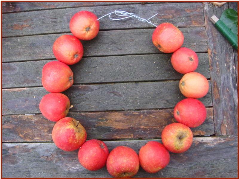 Æblekrans færdig med æbler