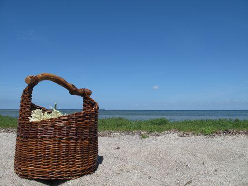 Kurv på strand