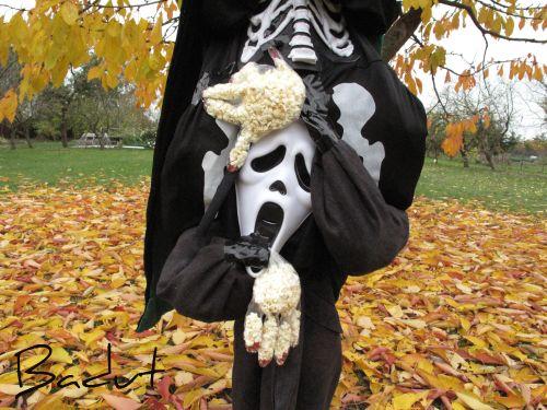 Halloween udklædning det lille skrig