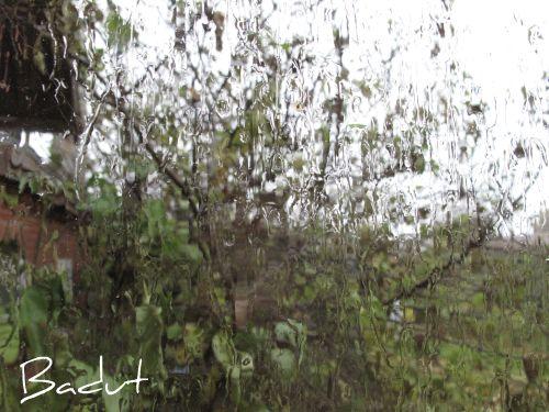 Novemberregn