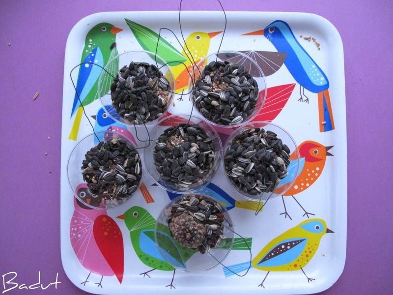 Majsebolde hæld frø, nødder og rosiner i