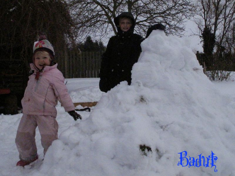 Sneboldkamp bag den store borg