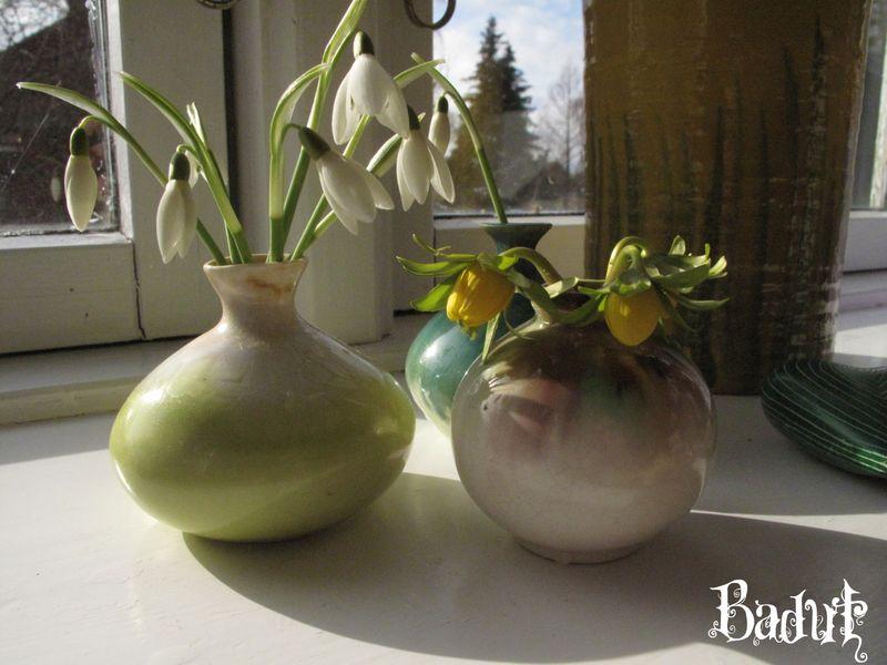 Blomster bragt ind