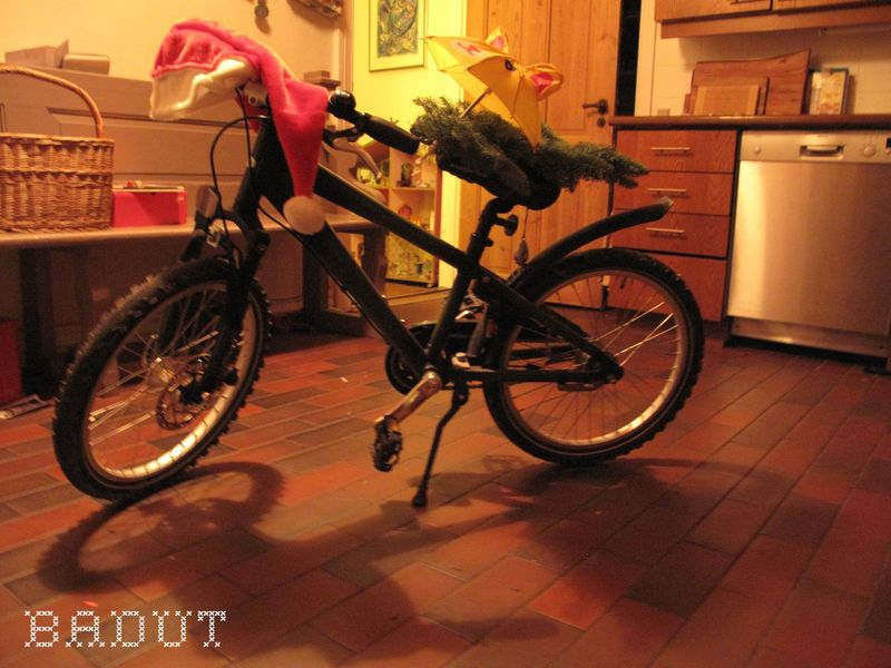 Drillenisses cykel i køknet