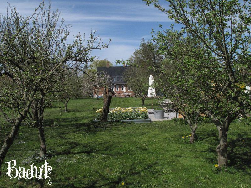 Haven først i maj kik til huset