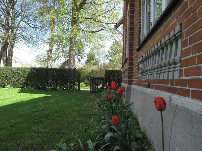 Haven først i maj kik langs huset