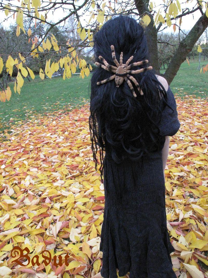 Heksekostyme bagfra