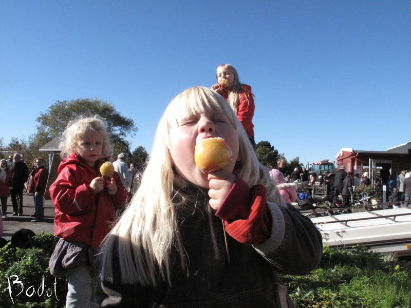 Der spises kandiserede æbler