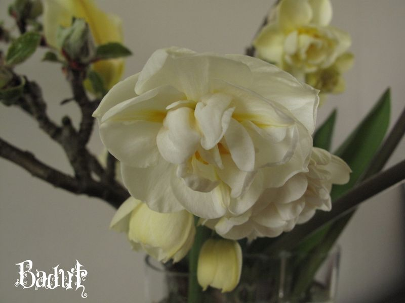 Narcis Bridal Crown