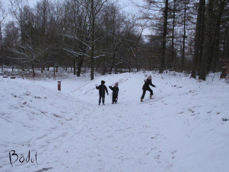 1 søndag i advent sneboldsbørn