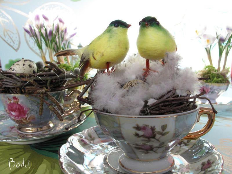 Lille kærlighedesrede med fugle