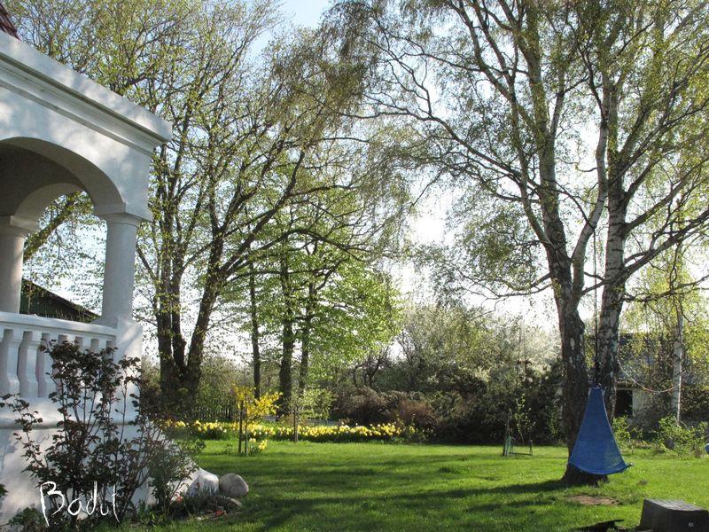 Højbo have