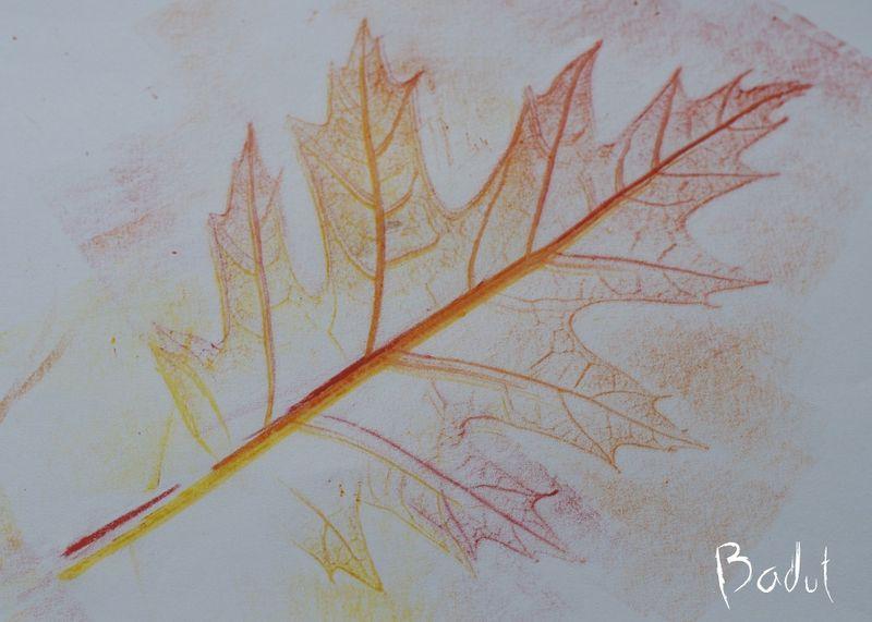 Gnidetryk med blade flere farver