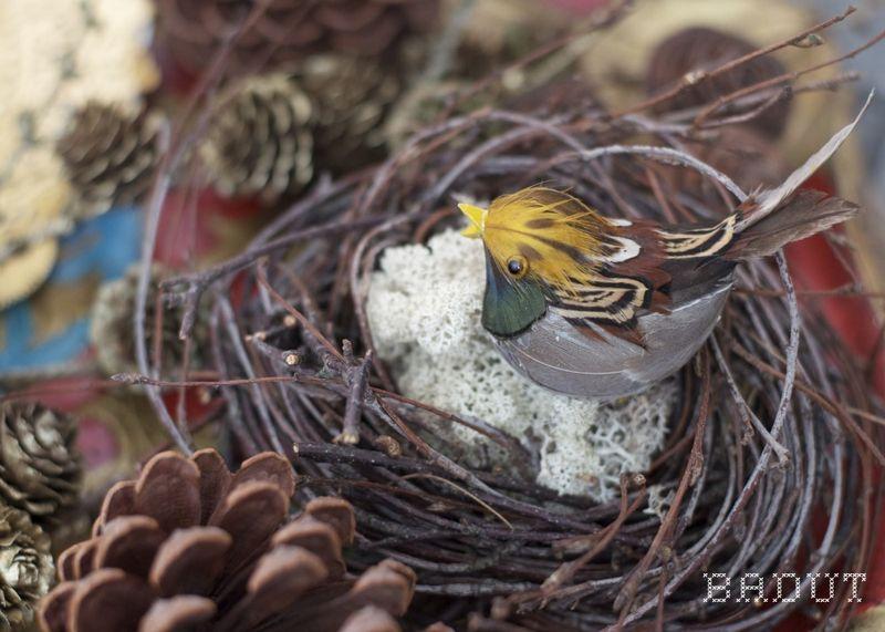 Fugl på rede af birkekrans