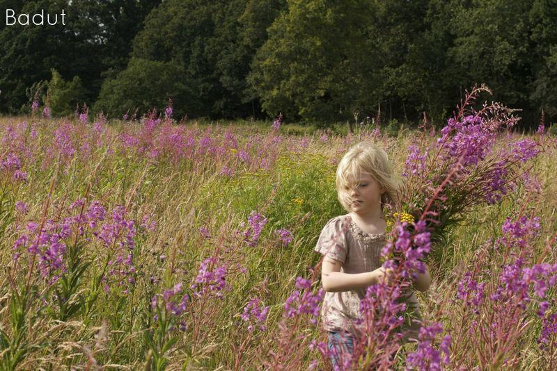 Anna plukker blomster