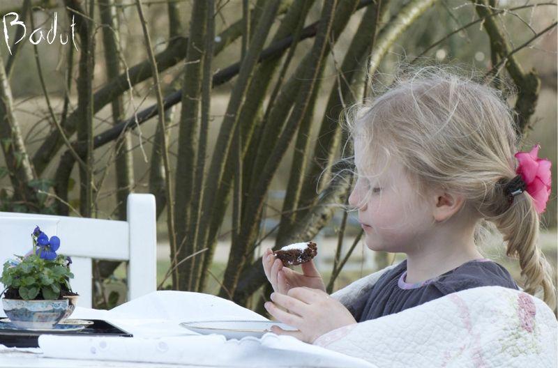 Forårsblomster og kage i marts