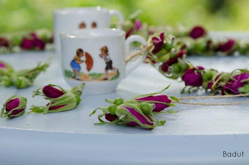 Lav en rosensnor træk roser på snor