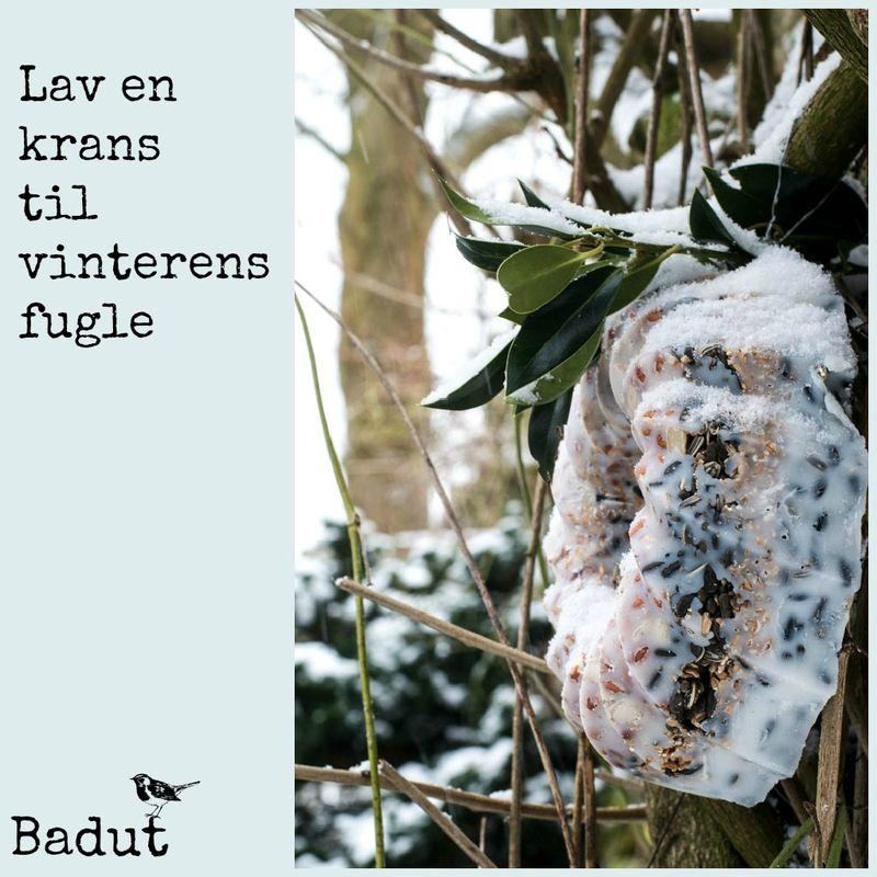 Krans til vinterens fugle med tekst