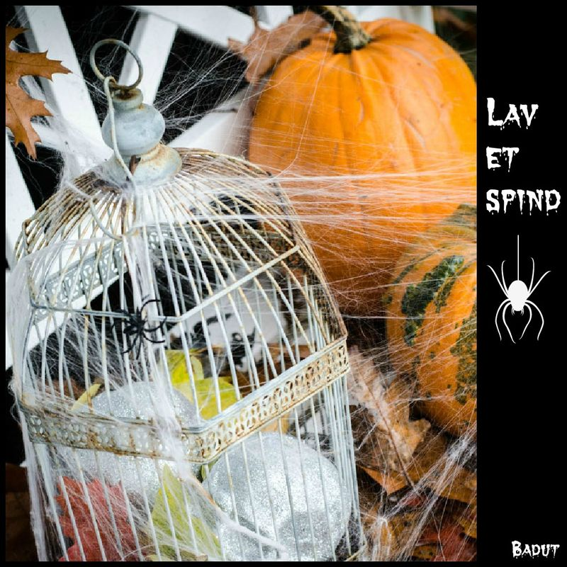 Lav spindelvæv