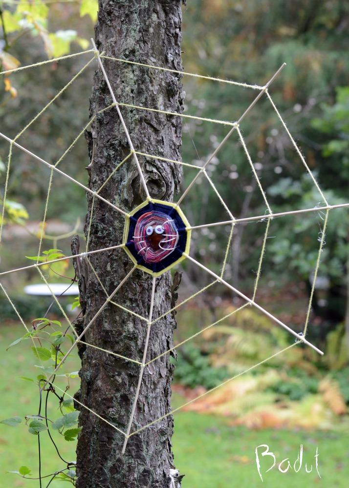 Kastanje edderkop