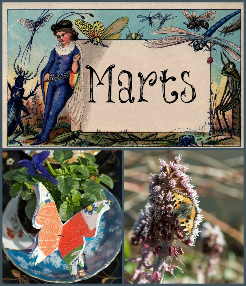 Marts Collage