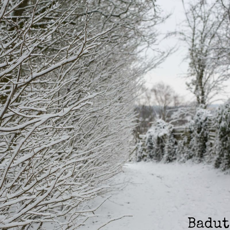 Sne midt i marts
