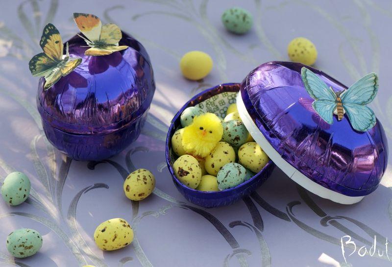 Sommerfugle æg