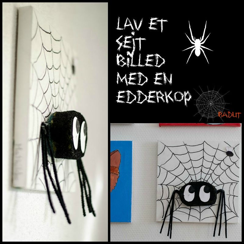 Billed med edderkop