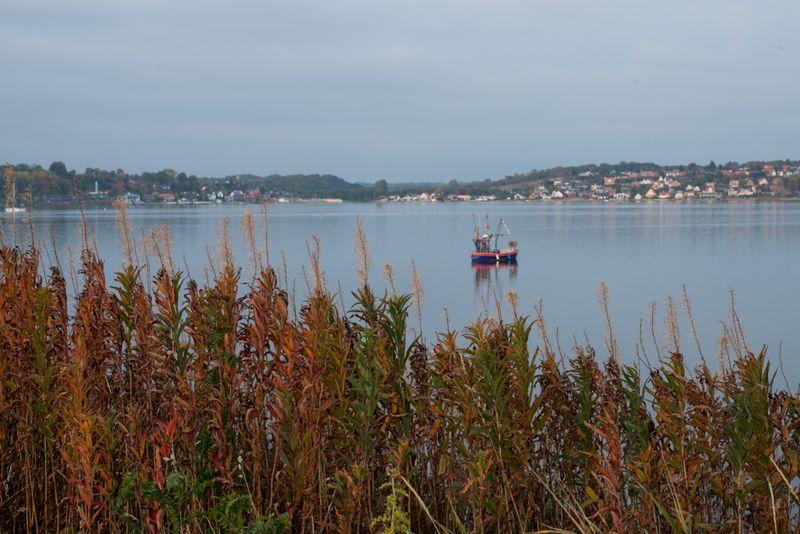 Fiskekutter ved kolding fjord-2