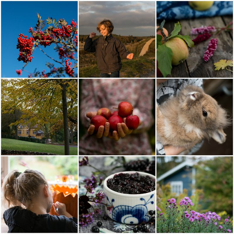 Collage fra oktober