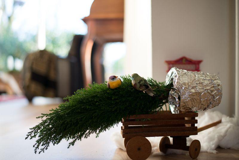 Nissedør- Nissen henter juletræ