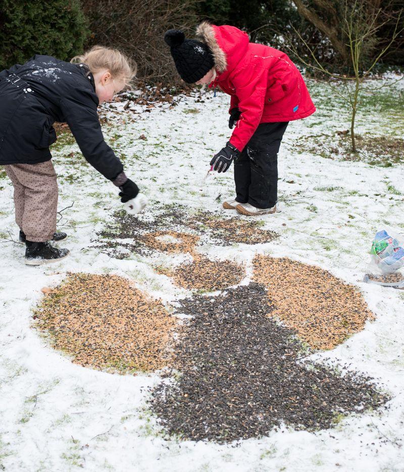Sneengel til fuglene
