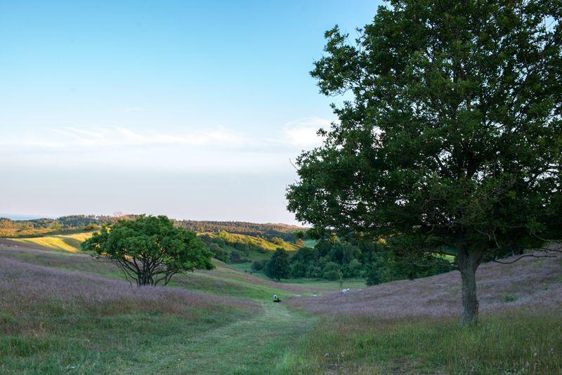 Landskabet ved Agri Bavnehøj-3