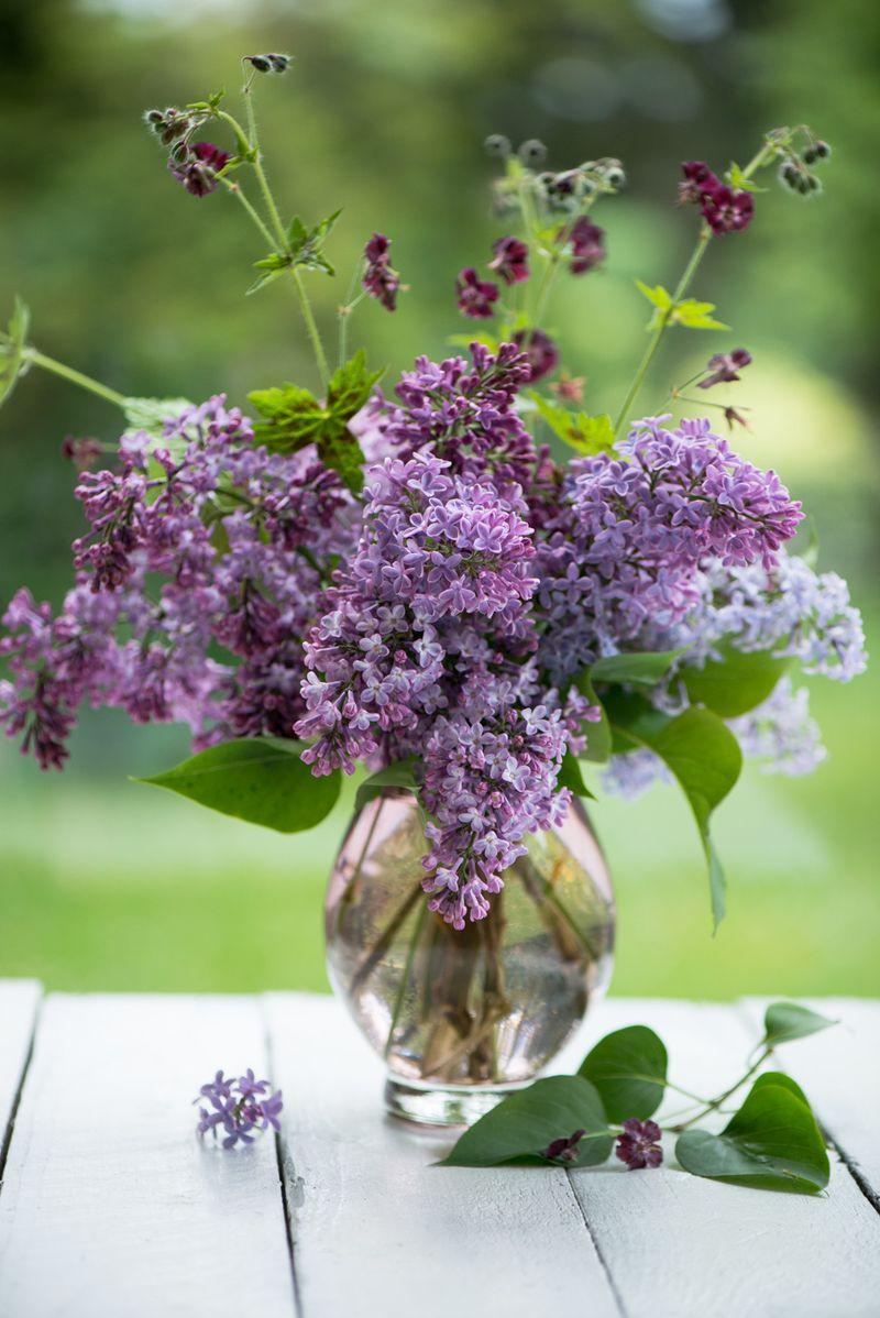 Syrener i vase