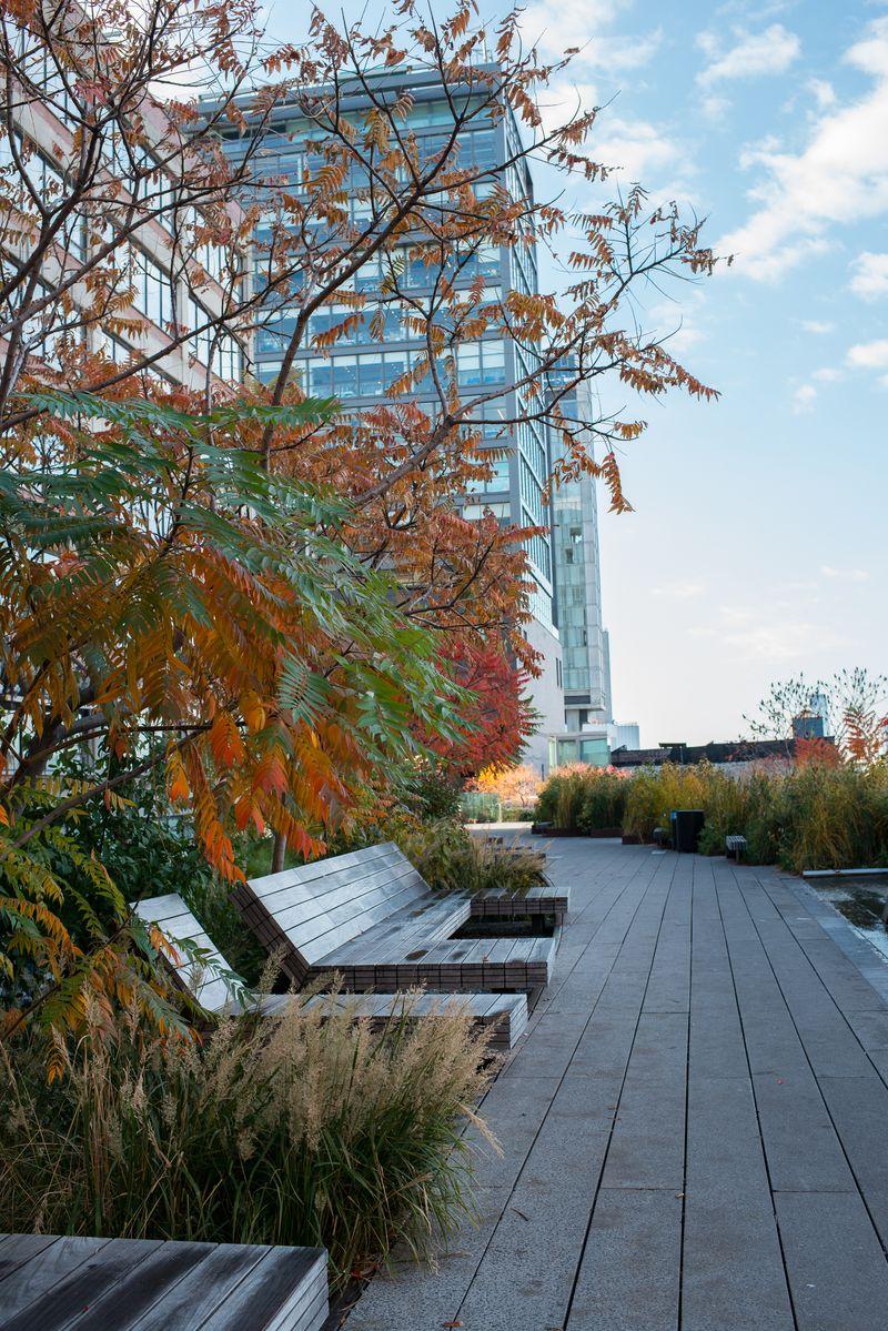 Soldæk på the High Line