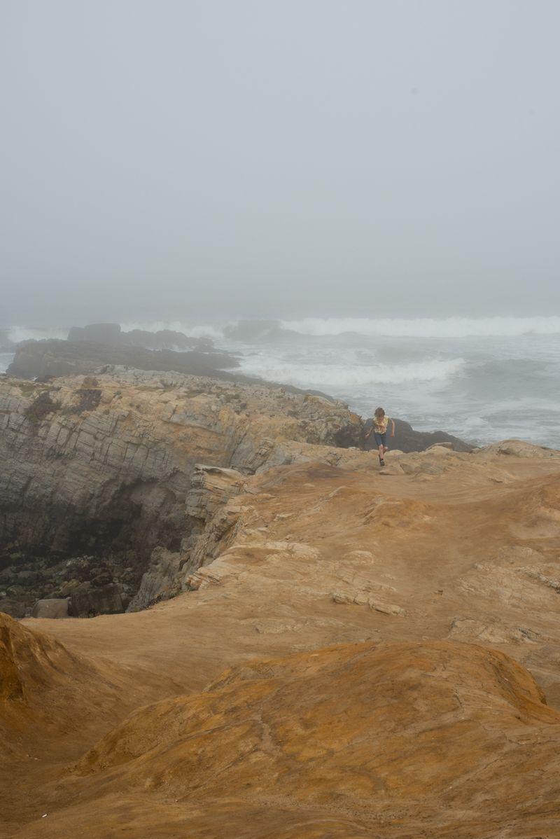 Tåge ved High Way 1 Californien