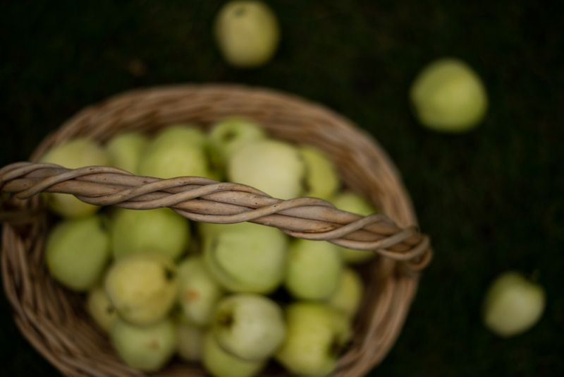 Æbler til æblemos