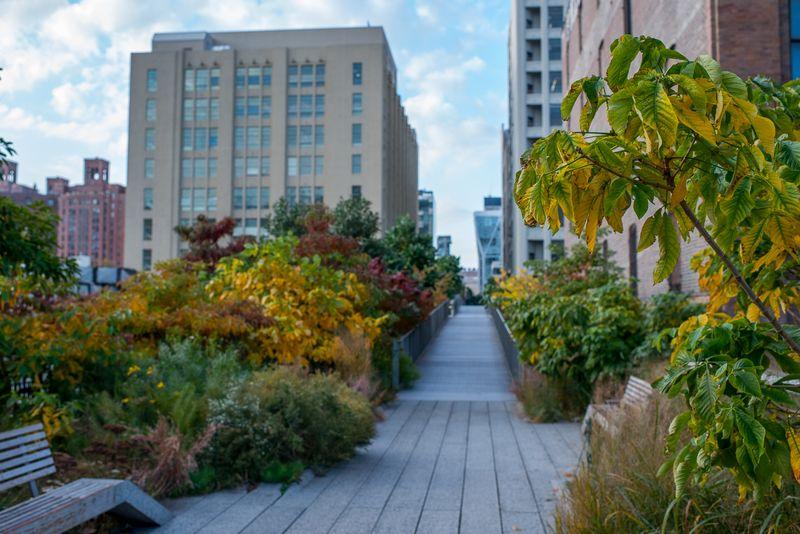 Efterår på the High Line