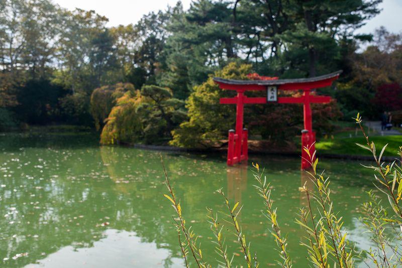 Den japanske afdeling i Brooklyn botaniske have