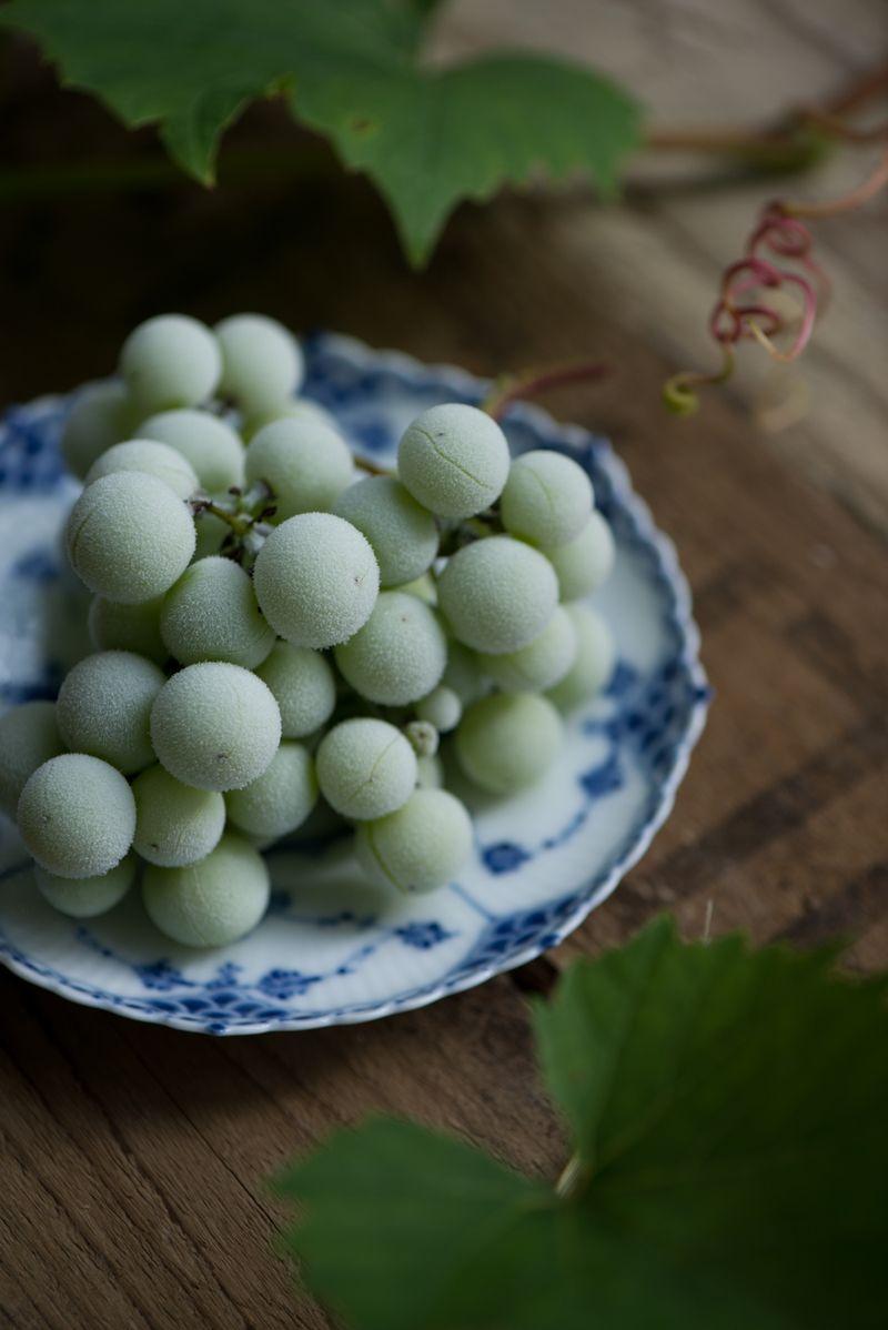 Frosne vindruer som sund snack