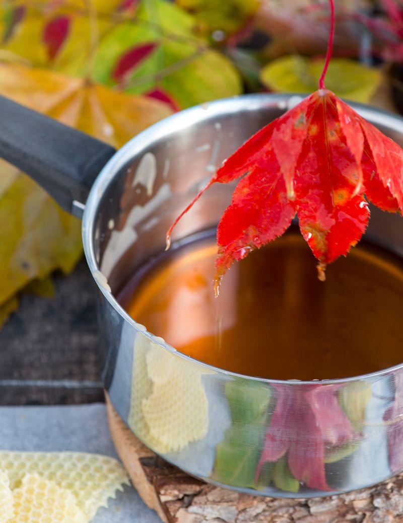 Sådan bevarer du farven på efterårets blade med voks