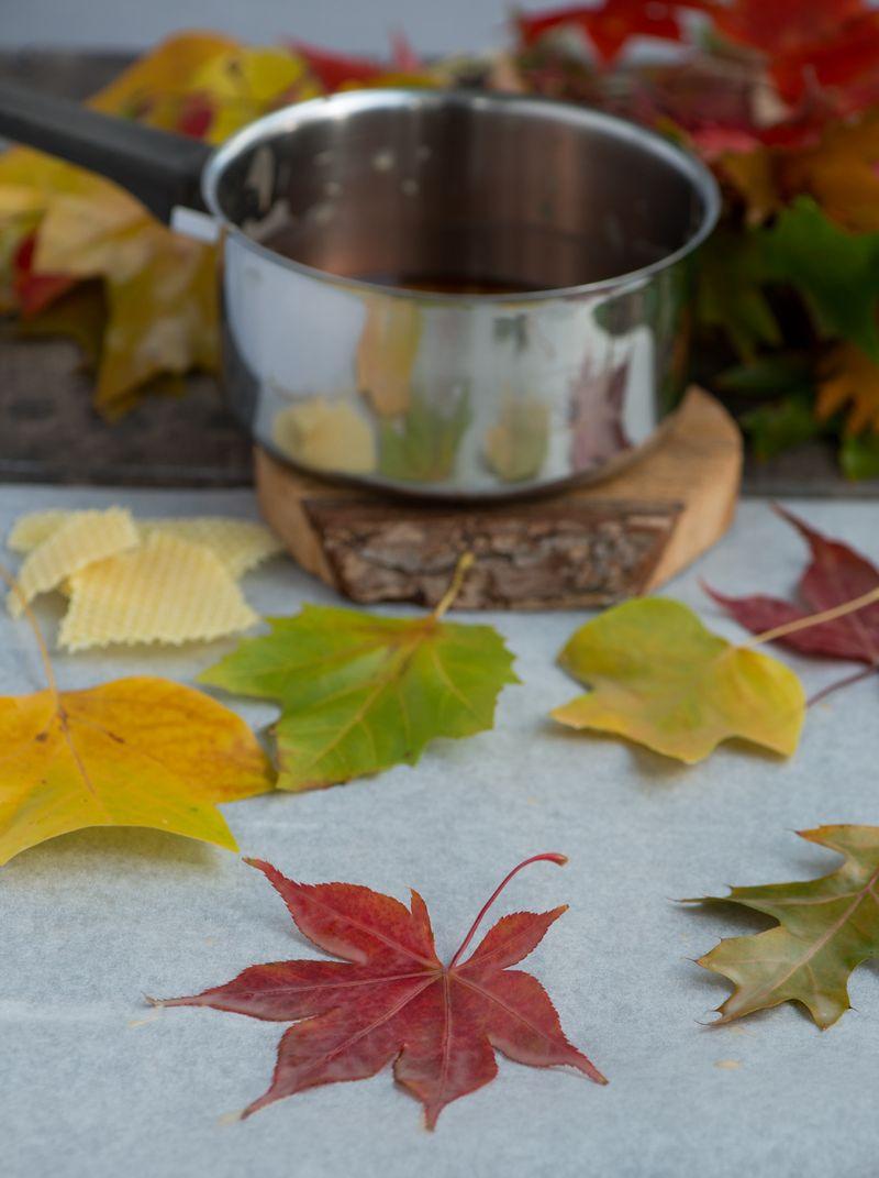 Efterårsblade med bivoks
