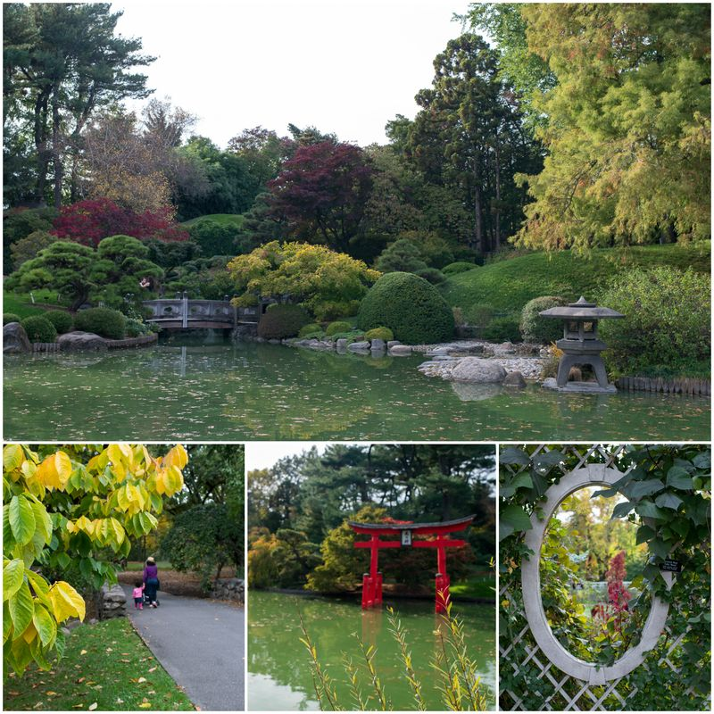 Brooklyn botanisk have