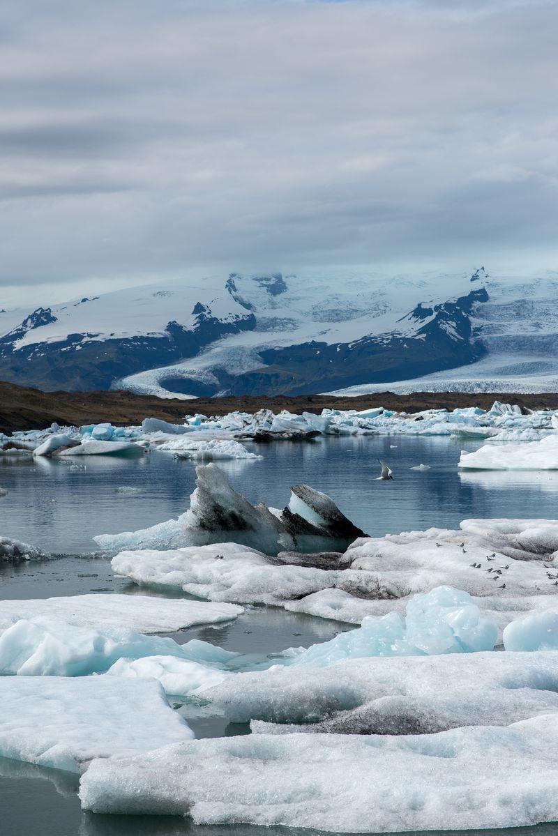 Gletscherlagune på Island